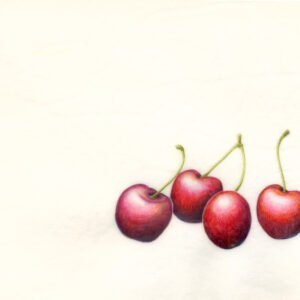 Cherries on Vellum