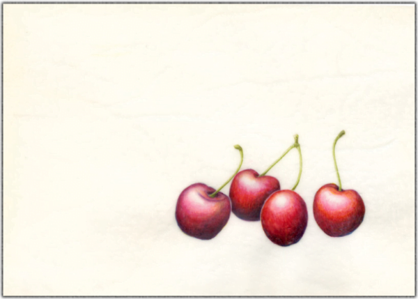 Cherries on Vellum Print